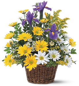 Smiling Spring Basket in Carol Stream IL, Fresh & Silk Flowers
