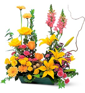 Celebrate in Style in Birmingham AL, Norton's Florist