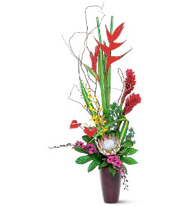 Tropical Beauty in Plantation FL, Plantation Florist-Floral Promotions, Inc.