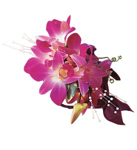 Fuchsia Orchids Wristlet in Macon GA, Lawrence Mayer Florist