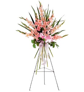 Sentimental Gladioli Spray in Brownsburg IN, Queen Anne's Lace Flowers & Gifts