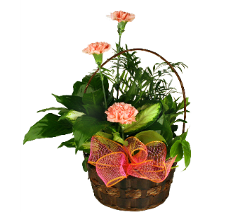 Planter Basket with Cut Flowers in Indianapolis IN, McNamara Florist