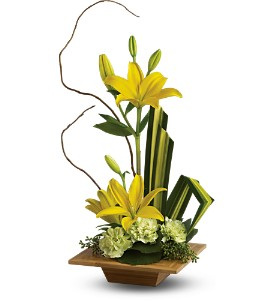Teleflora's Bamboo Artistry in Milford MI, The Village Florist