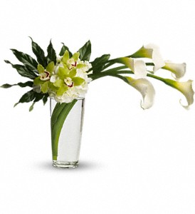 Moondance in Plantation FL, Plantation Florist-Floral Promotions, Inc.