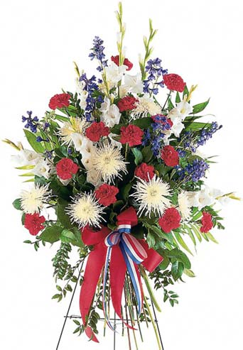 Patriotic Spirit Spray in McLean VA, MyFlorist