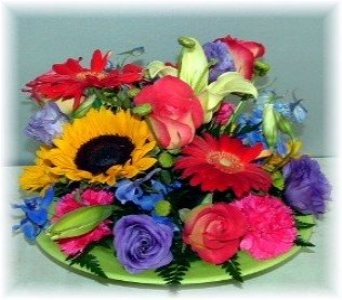 Rainbow of color in Plantation FL, Plantation Florist-Floral Promotions, Inc.