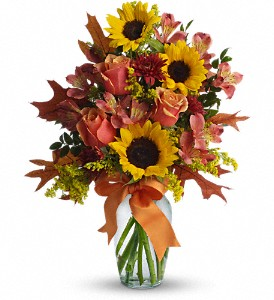 Warm Embrace in Danvers MA, Novello's Florist
