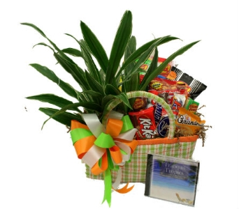 Beach Bag Snacks and Greens in Birmingham AL, Norton's Florist