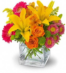 Teleflora's Summertime Splash in El Cajon CA, Jasmine Creek Florist