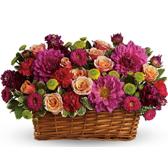 Burst of Beauty Basket  in McLean VA, MyFlorist