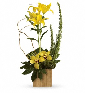 Teleflora's Bamboo Tropics in Toronto ON, Ginkgo Floral Design