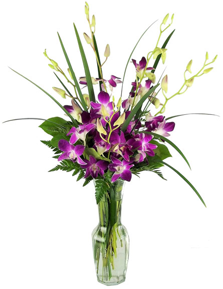 Orchids, Untouched in Las Vegas NV, A French Bouquet
