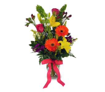 Bold & Beautiful in Indianapolis IN, McNamara Florist