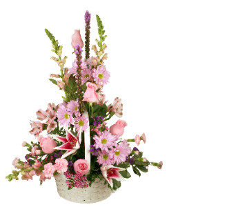 Spring Basket in Indianapolis IN, McNamara Florist