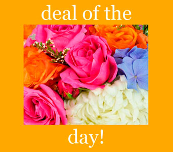 Deal of the Day! in Ogden UT, Jimmy's Flowers