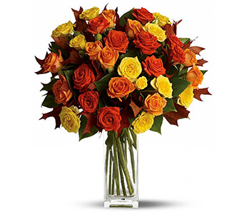 Fabulous Fall Roses in McLean VA, MyFlorist