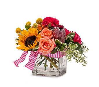 Jazz in Raritan NJ, Angelone's Florist - 800-723-5078
