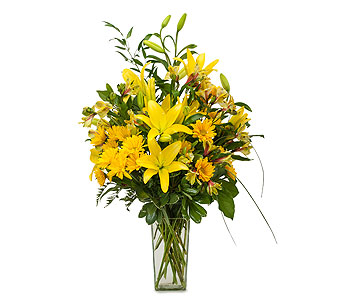 Morning Glory in Plantation FL, Plantation Florist-Floral Promotions, Inc.