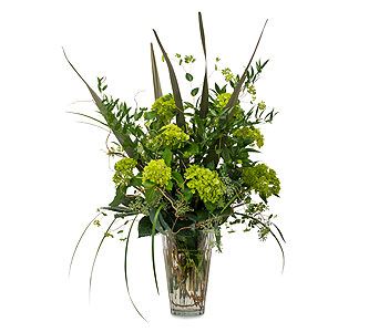 Natural Green in Rochester NY, Fioravanti Florist