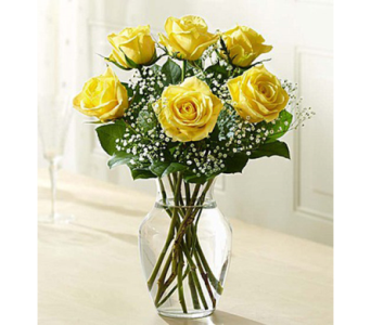 Love''s Embrace Roses - Yellow in El Cajon CA, Conroy's Flowers