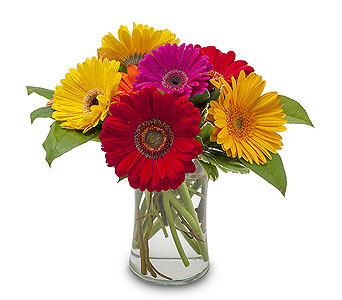 Fruity in Corpus Christi TX, Always In Bloom Florist Gifts