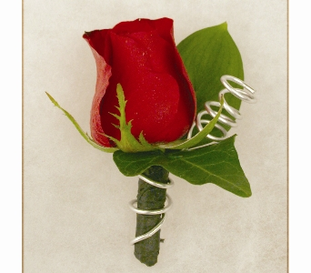 Red Rose Boutonniere in Indianapolis IN, McNamara Florist