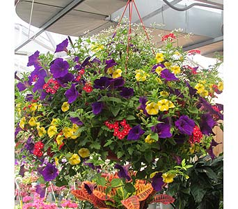 Beautiful Baskets of Annuals Available in Flemington NJ, Flemington Floral Co. & Greenhouses, Inc.
