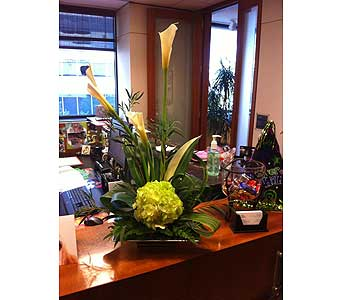 You are Classy in Charlotte NC, Starclaire House Of Flowers Florist