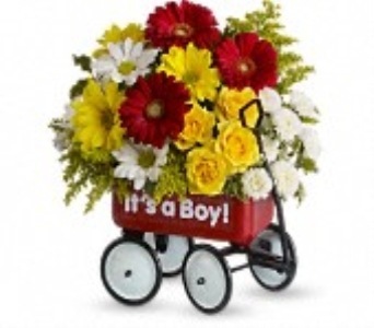 Baby's Wow Wagon-Boy in Concord CA, Jory's Flowers