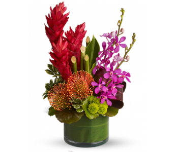 Paradise Island bouquet with orchids in Santa Monica CA, Edelweiss Flower Boutique