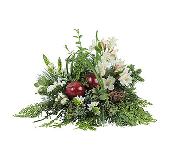 Enchantment in Plantation FL, Plantation Florist-Floral Promotions, Inc.