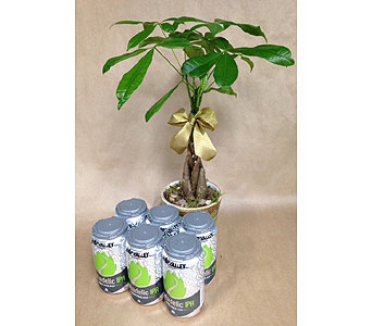 Money Tree and Beer in Portland OR, Portland Bakery Delivery