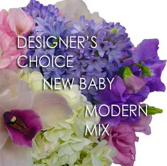 Designer''s Choice New Baby in Santa Monica CA, Edelweiss Flower Boutique