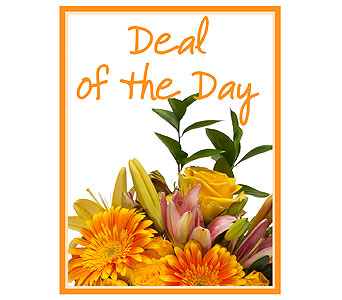 Deal of the Day in Austin TX, The Flower Bucket