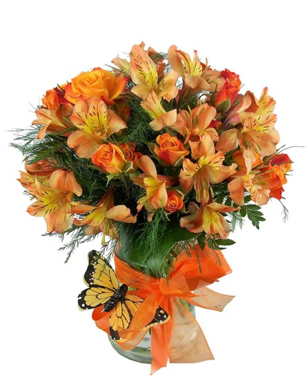 Orange Fizz in Las Vegas NV, A French Bouquet