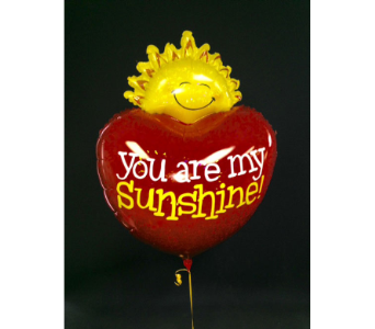 You are My Sunshine in Portland OR, Portland Florist Shop