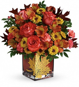 Teleflora's Roses And Maples Bouquet in North Olmsted OH, Kathy Wilhelmy Flowers