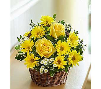 Basket of Sunshine-Small in El Cajon CA, Conroy's Flowers