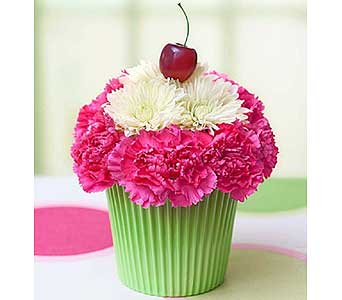 Cupcake in Bloom in El Cajon CA, Conroy's Flowers