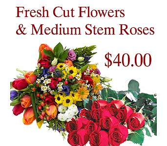 Fresh Cut Flowers & Med Stem Roses in Innisfil ON, Lavender Floral