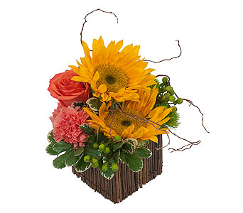 Naturally Simple In Springfield Oh Schneider S Florist