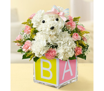 It's a-DOG-able!� in Las Vegas NV, A French Bouquet