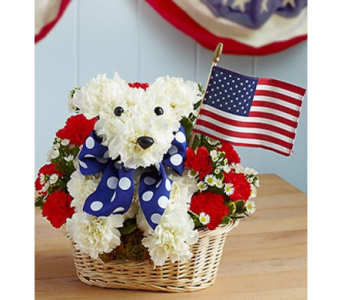 Yankee Doodle Doggie� in Las Vegas NV, A French Bouquet