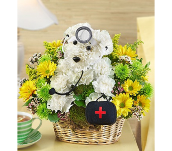 Doggie Howser M.D.� in Las Vegas NV, A French Bouquet
