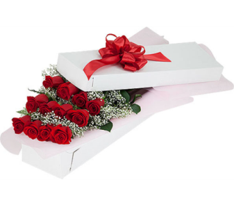 Red Roses in a Gift Box in Ottawa ON, Exquisite Blooms