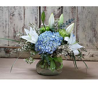 Blue Elegance in Kingston ON, Pam's Flower Garden