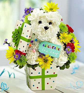 Party Pooch from 1-800-Flowers in Las Vegas NV, A French Bouquet