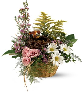 Teleflora's Nesting Basket in Brownsburg IN, Queen Anne's Lace Flowers & Gifts