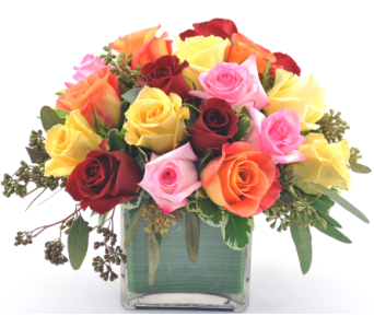 Rose Cube Assorted in San Angelo TX, Shirley's Floral Company