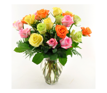 Rainbow Roses 24 in San Angelo TX, Shirley's Floral Company